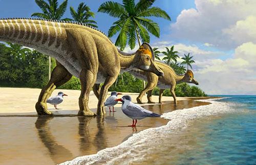 """在""""错误的""""大陆上发现了鸭嘴龙恐龙的化石"""
