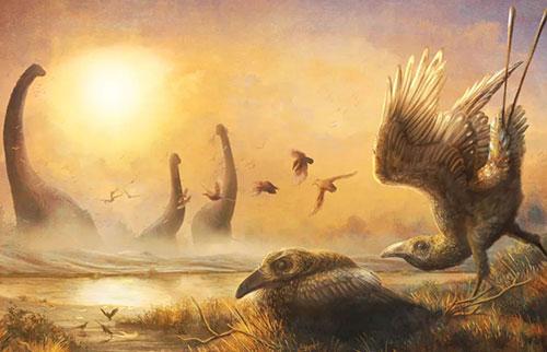 恐龙时代的鸟有一个迅猛龙的头和巨嘴鸟的喙
