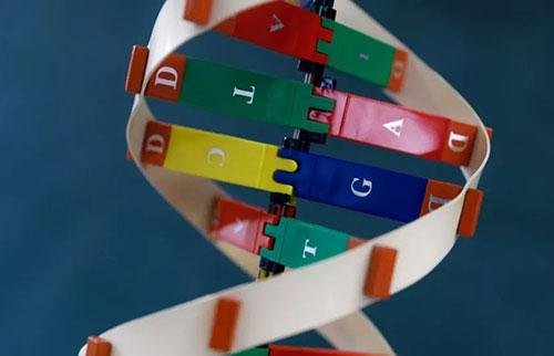 为什么DNA会自发突变?量子物理学可以解释