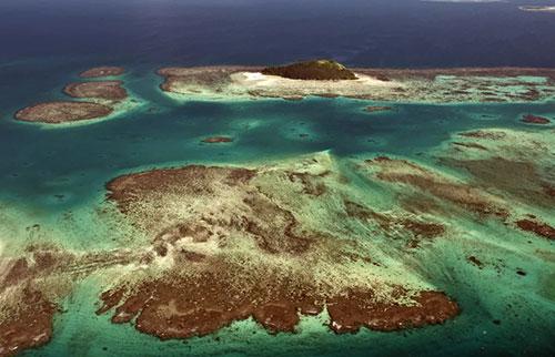 一个隐藏的大陆在新西兰附近诞生了一个新的俯冲带
