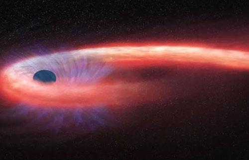 """无洞的恒星被黑洞""""迷住了"""""""
