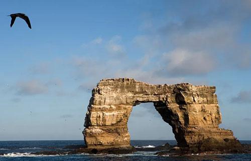"""加拉帕戈斯标志性的""""达尔文拱门""""坠毁入海"""