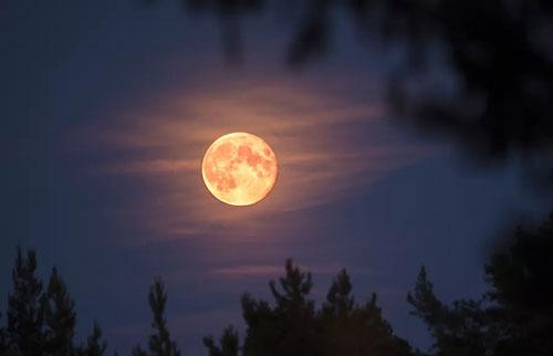 """这是本周四观看六月""""草莓""""超级月亮的方法"""