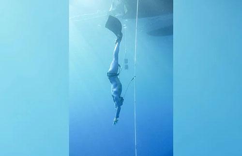 自由潜水员的心率可低至每分钟 11 次