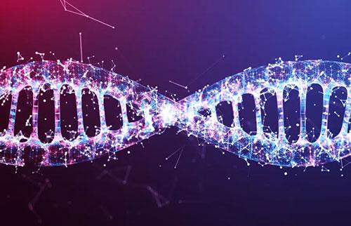 DNA 如何知道在每个细胞中做什么工作?
