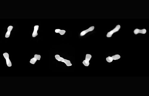"""奇怪的""""狗骨""""小行星可能是一堆宇宙瓦砾"""
