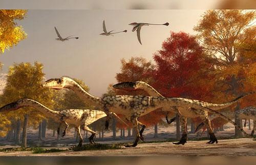 有些恐龙可能会摇尾巴来帮助它们奔跑