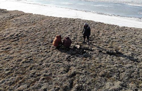 俄罗斯探险队发现北极圈上方最北端石器时代猎人的证据